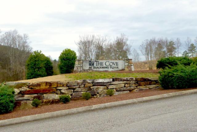 228 Lake Ferry Drive, Loudon, TN 37774 (#1072853) :: Billy Houston Group