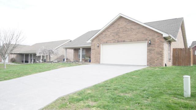 1010 Mercer Drive, Maryville, TN 37801 (#1073037) :: Shannon Foster Boline Group