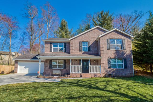 1208 Hickey Rd, Knoxville, TN 37932 (#1073555) :: Billy Houston Group
