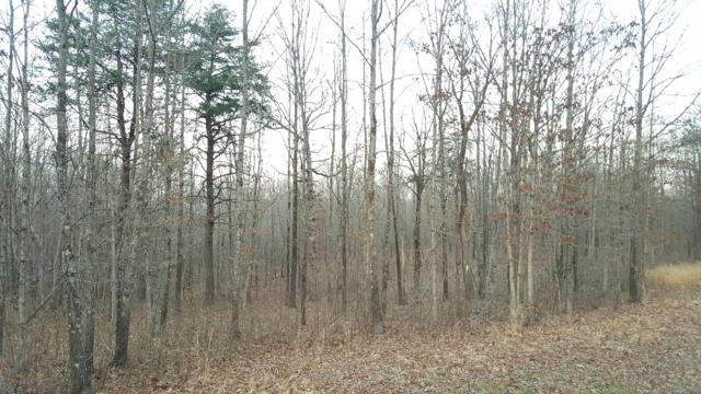 Lot 112 Gray Rock View, Pikeville, TN 37367 (#1073634) :: Exit Real Estate Professionals Network