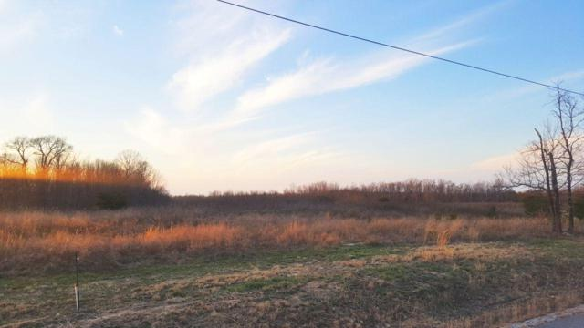 Lot 253 Gray Rock View, Pikeville, TN 37367 (#1073635) :: Exit Real Estate Professionals Network