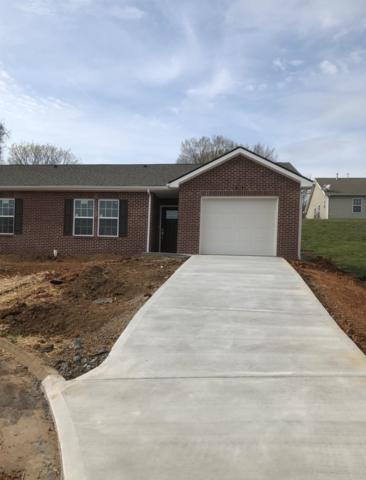 713 Spring Park Rd, Knoxville, TN 37914 (#1074959) :: Billy Houston Group