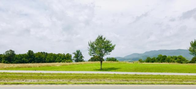 Cumberland Gap Pkwy, harrogate, TN 37752 (#1075066) :: Shannon Foster Boline Group