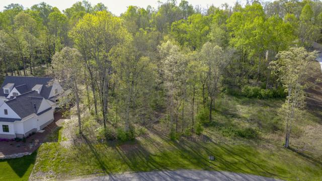Lanyard Lane Lot 142 Lane, Louisville, TN 37777 (#1076229) :: Catrina Foster Group