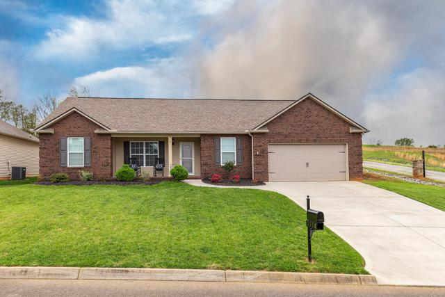 2538 Ancient Oak Lane, Knoxville, TN 37931 (#1076445) :: Catrina Foster Group