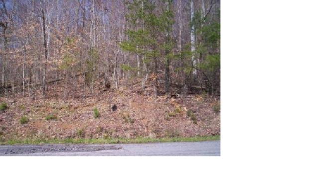 Lot 259 Big Ridge Pointe, Sharps Chapel, TN 37866 (#1076589) :: Venture Real Estate Services, Inc.