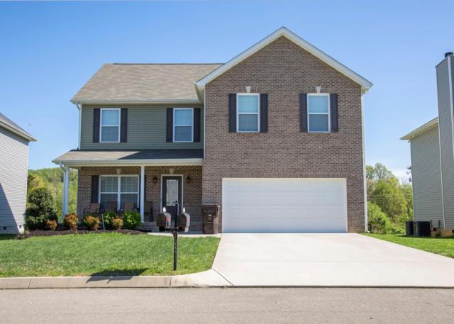7316 Lucky Clover Lane, Knoxville, TN 37931 (#1076882) :: Catrina Foster Group
