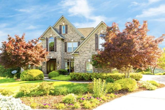 140 Downing Court, Lenoir City, TN 37772 (#1078642) :: The Creel Group | Keller Williams Realty