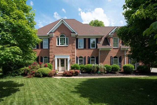 14 Radcliff Terrace, Oak Ridge, TN 37830 (#1079501) :: Realty Executives