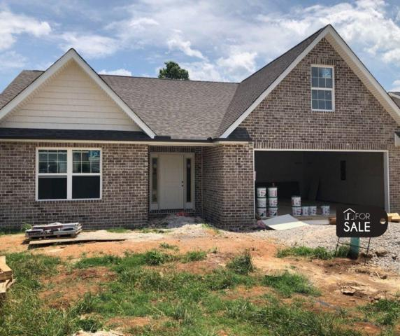 1828 River Poppy Drive, mascot, TN 37806 (#1080078) :: Shannon Foster Boline Group