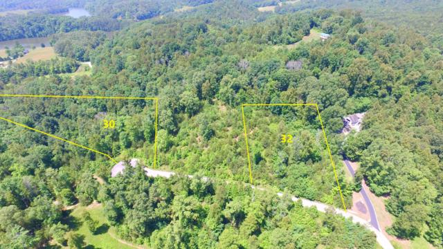 L30 Springwater Run, Madisonville, TN 37354 (#1081408) :: Realty Executives