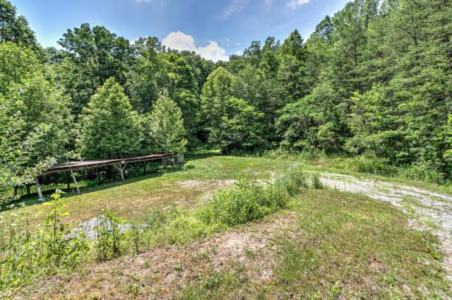 Campbell Highlands Drive, Pioneer, TN 37847 (#1081424) :: Realty Executives