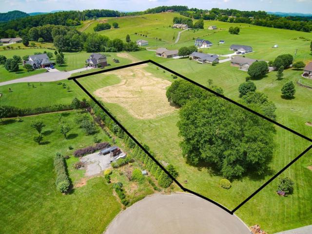 Bryson Court, Sevierville, TN 37876 (#1082893) :: Venture Real Estate Services, Inc.