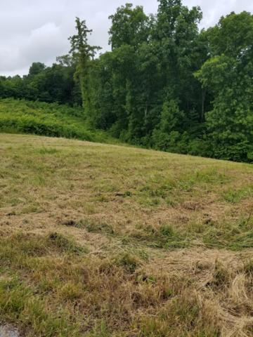 Lot 56 Pinnacle Lane, LaFollette, TN 37766 (#1083096) :: Shannon Foster Boline Group