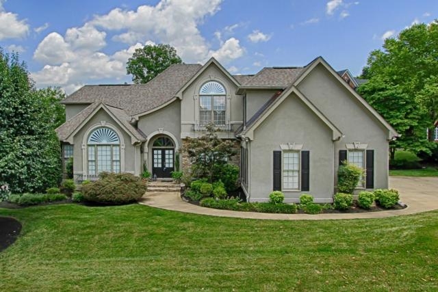 1212 Gettysvue Way, Knoxville, TN 37922 (#1083493) :: Realty Executives