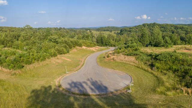 694 Red Hill Lane, Greenback, TN 37742 (#1083578) :: Realty Executives