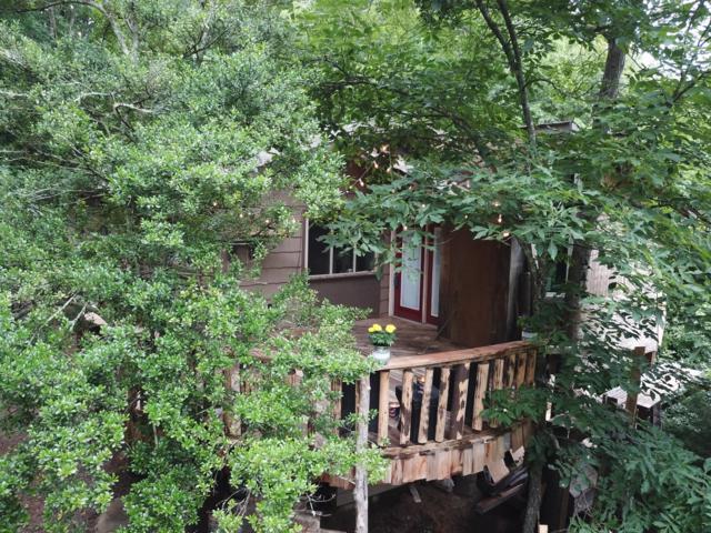 2204 Happy Creek, Seymour, TN 37865 (#1083793) :: Shannon Foster Boline Group