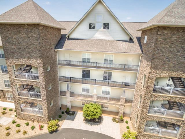 333 Sandpiper Lane #333, Bean Station, TN 37708 (#1084158) :: Billy Houston Group