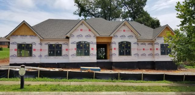 Lot 61 Lone Willow Drive, Farragut, TN 37934 (#1084345) :: Billy Houston Group