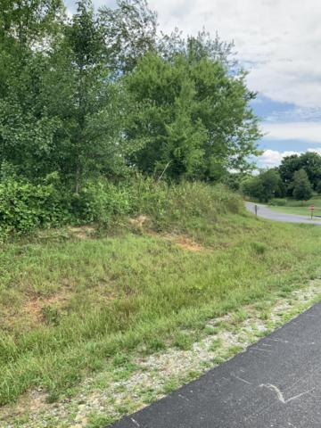 W Walelu Tr, Vonore, TN 37885 (#1084539) :: Shannon Foster Boline Group