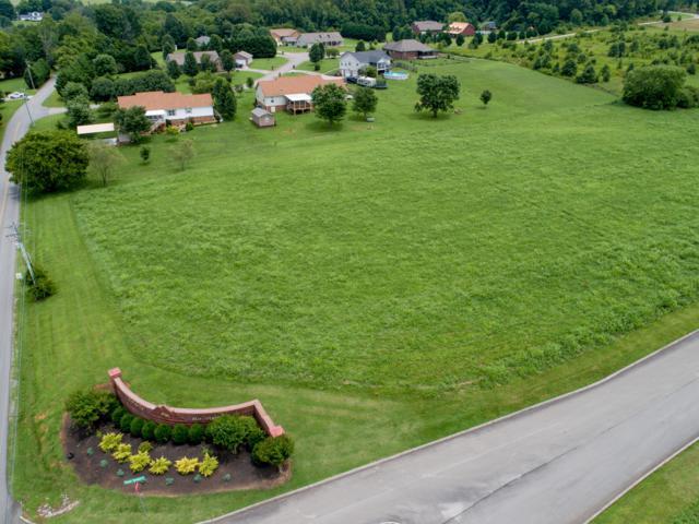 603 Majestic Mtns Blvd, Walland, TN 37886 (#1085470) :: SMOKY's Real Estate LLC