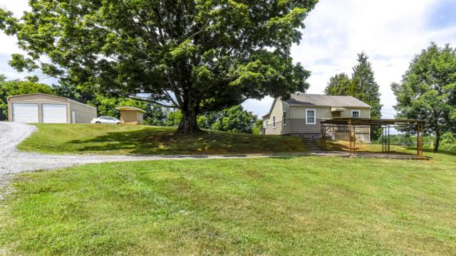 3302 Us Hwy 411 South, Maryville, TN 37803 (#1085843) :: Realty Executives