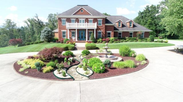 231 Owassa Drive, Newport, TN 37821 (#1085979) :: Realty Executives Associates Main Street