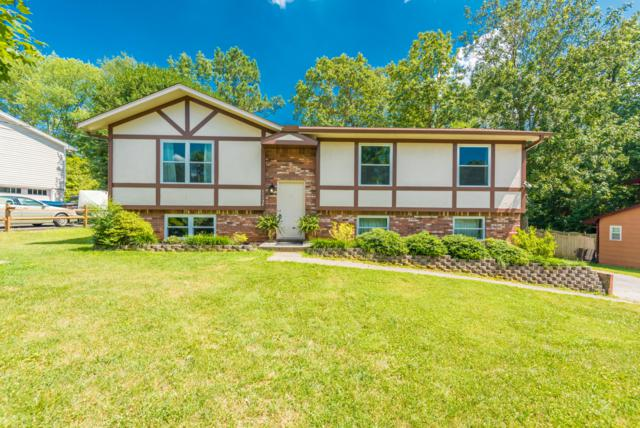 11124 Concord Woods Drive, Knoxville, TN 37934 (#1087166) :: Shannon Foster Boline Group