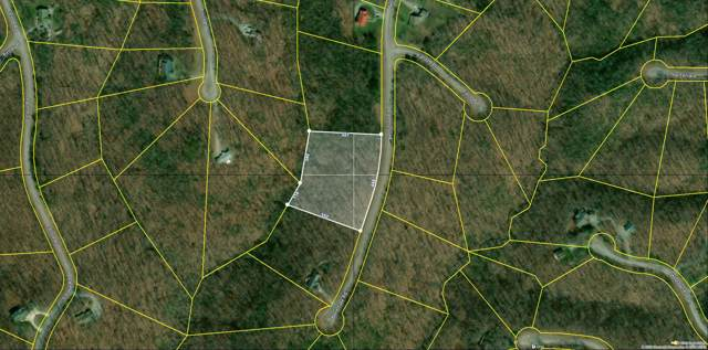 Bent Tree Rd, Monterey, TN 38574 (#1087467) :: Catrina Foster Group