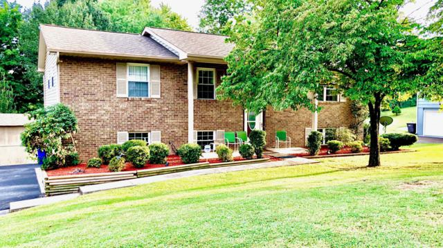 10816 Dineen Drive, Knoxville, TN 37934 (#1087548) :: Shannon Foster Boline Group