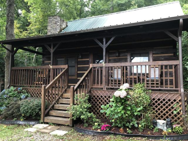 171 Townview Drive, Tellico Plains, TN 37385 (#1087578) :: Billy Houston Group