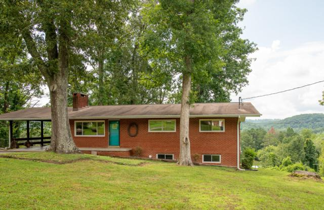 103 Stanton Lane, Oak Ridge, TN 37830 (#1087615) :: Billy Houston Group