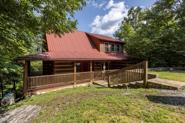 190 Cold Springs, Townsend, TN 37882 (#1089224) :: Realty Executives