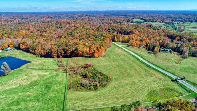 Leatherwood Ford Rd, Jamestown, TN 38556 (#1091742) :: Shannon Foster Boline Group