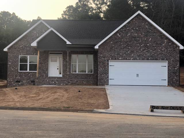 669 Carrington Blvd, Lenoir City, TN 37771 (#1092996) :: Shannon Foster Boline Group