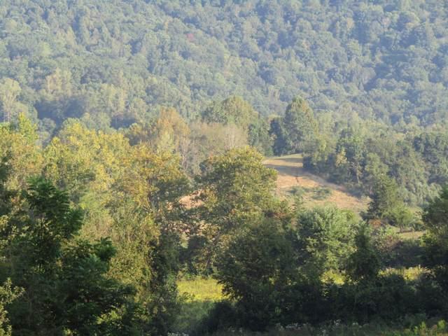 E Twin Hills Lane E Of Lane, Jacksboro, TN 37757 (#1094446) :: Shannon Foster Boline Group