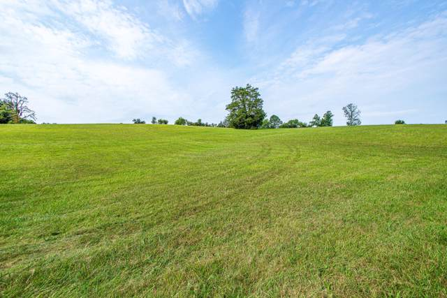 Asheville Hwy, Strawberry Plains, TN 37871 (#1096042) :: Realty Executives