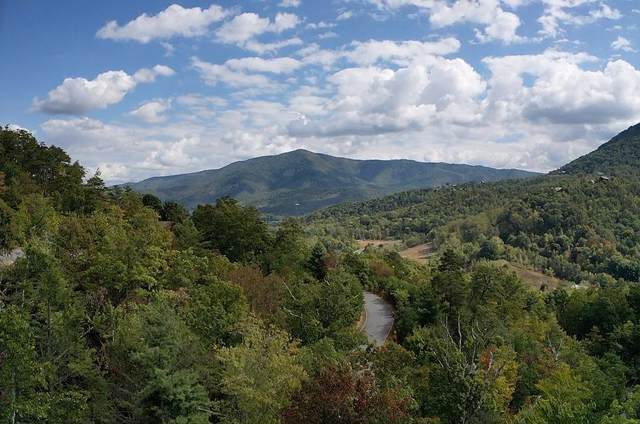 Lots 141/142 Timber Cove Way, Sevierville, TN 37862 (#1096930) :: Venture Real Estate Services, Inc.