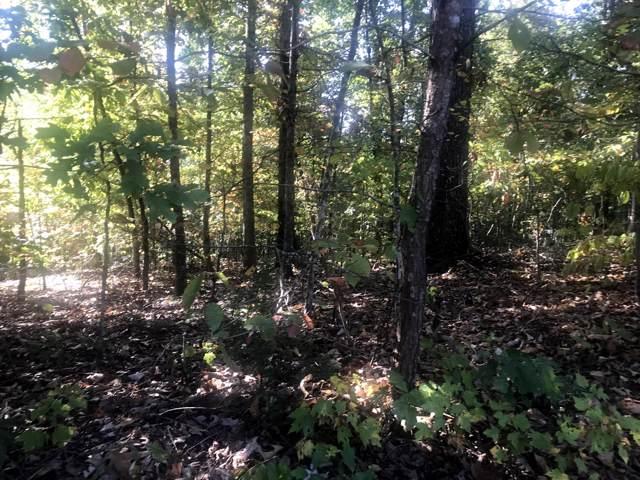 200 Osage Lane, Loudon, TN 37774 (#1097389) :: Catrina Foster Group