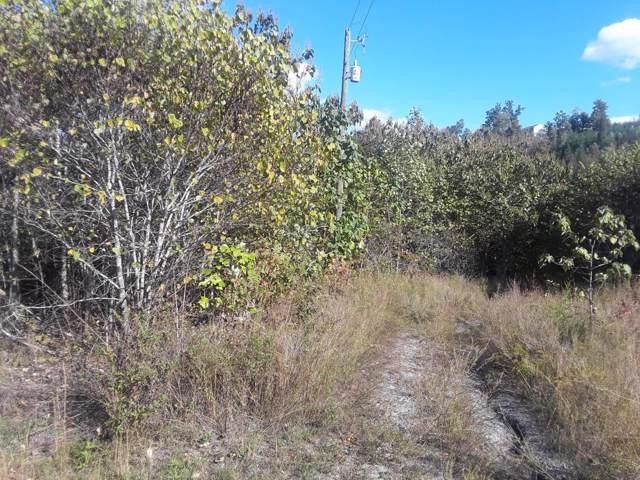 Panoramic Drive, Maynardville, TN 37807 (#1097702) :: The Creel Group   Keller Williams Realty