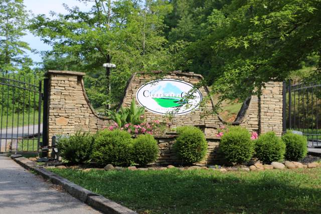 Clearwater Cove Rd, LaFollette, TN 37766 (#1097907) :: Venture Real Estate Services, Inc.