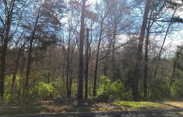 Lot 28 Indian Ridge Rd, Blaine, TN 37709 (#1099346) :: The Cook Team