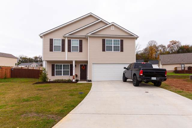 9400 Calla Lilly Lane, mascot, TN 37806 (#1099353) :: Shannon Foster Boline Group