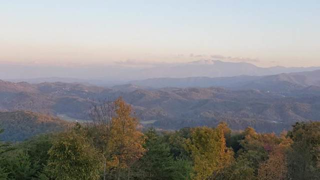 Lot 109 Summit Trails Drive, Sevierville, TN 37862 (#1099487) :: Billy Houston Group