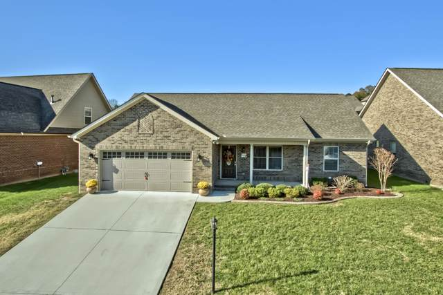 3329 Parrish Hill Lane, Knoxville, TN 37938 (#1100153) :: Billy Houston Group