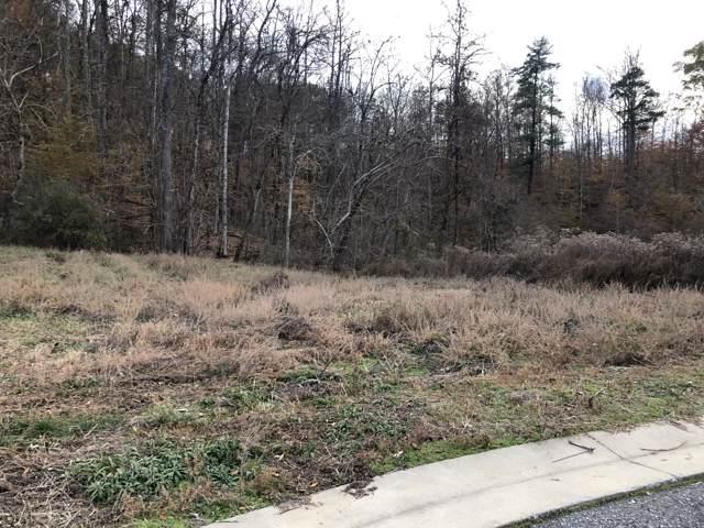 124 Willow Oak Drive Lot 66, Oak Ridge, TN 37830 (#1103785) :: Shannon Foster Boline Group