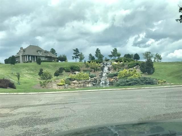 101 Blackberry Falls Dr, Loudon, TN 37774 (#1104443) :: Shannon Foster Boline Group