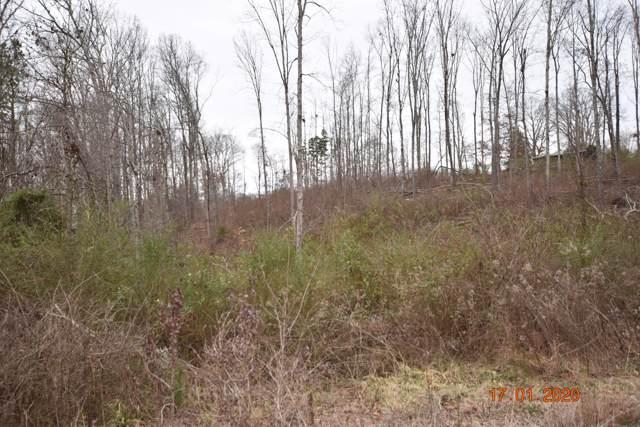 Maple Grove Rd, Ten Mile, TN 37880 (#1105031) :: Cindy Kraus Group | Realty Executives Associates