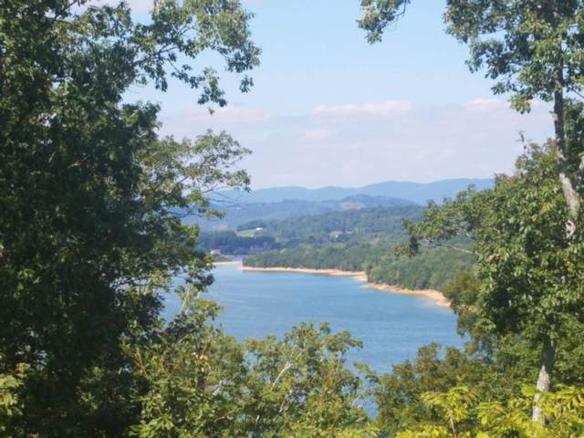 2017 Turners Landing Rd, Russellville, TN 37860 (#1107773) :: Venture Real Estate Services, Inc.
