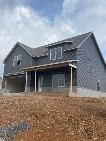10805 Snowfall Lane, Knoxville, TN 37931 (#1109687) :: Shannon Foster Boline Group